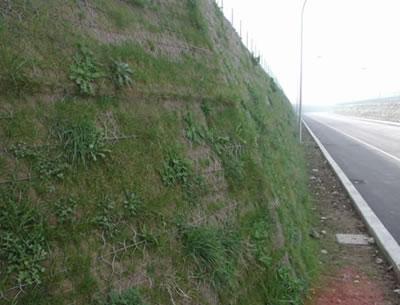 道路防护工程